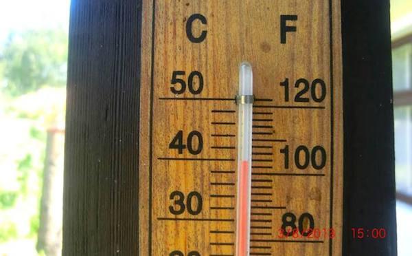 V Lakšárskej Novej Vsi namerali 3.augusta 2013 – 40°C v tieni. Foto: Ľudmila Bachnová